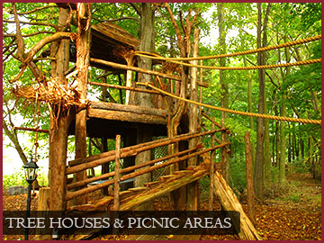 Tree Houses & Picnic Areas